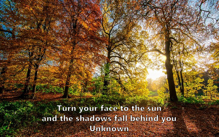 4.	Turn your face to the sun and the shadows fall behind you. Unknown